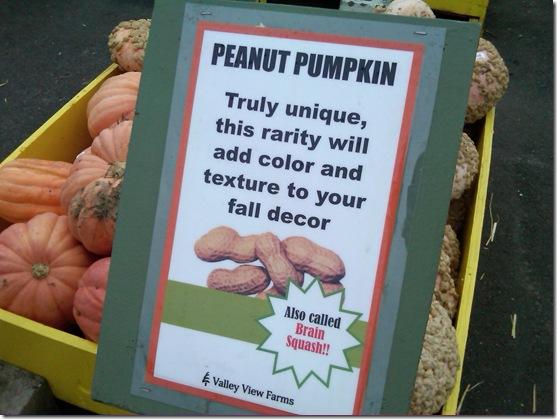 peanut pump
